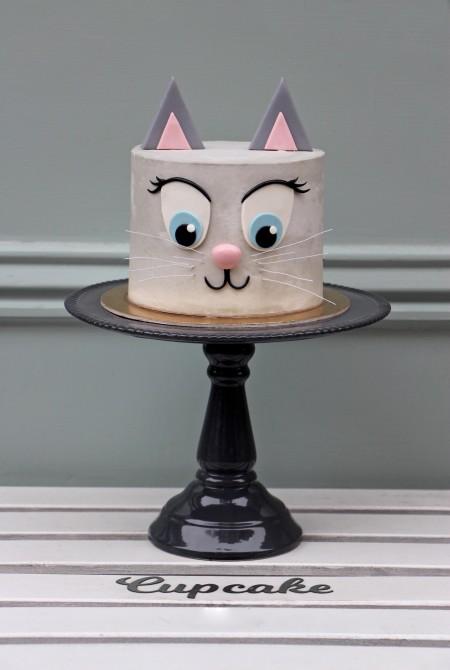 Cica torta - fehércsokiborítással